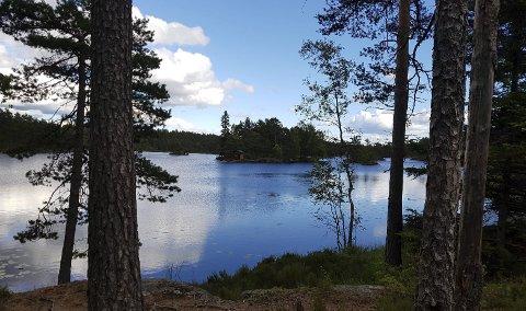 Idyll: Indre Østfold har andre og minst like gode kvaliteter som Norge ellers. Og så er vi ikke lei turistene. Det er etter hvert blitt en kvalitet i seg selv. Foto: Bjørn Steinar Meyer