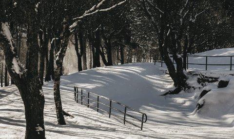 Den idyllen som er på dette bildet uteblir foreløpig fra Bodø. Likevel er det håp for hvit nedbør 3. juledag.