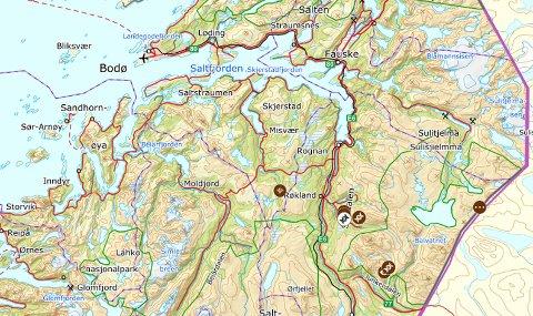 Kartet fra Rovbasen viser hvor det ble registrert bjørn i 2019.