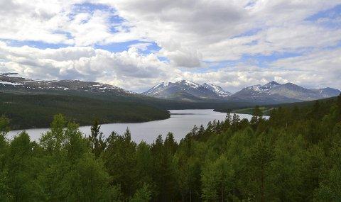 Rondane: Landskapsbilde sendt inn av Randi Marie Nystrand.