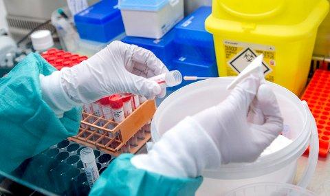 Koronaprøvene fra Fredrikstad og de andre kommunene i det tidligere Østfold analyseres på sykehuset på Kalnes. Laboratoriet har tatt i bruk en egen metode for å finne muterte varianter av koronaviruset.