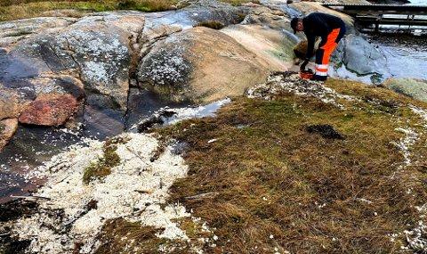 FARLIG: Mye parafinvoks ble funnet på strender i Oslofjorden denne vinteren.  Gassen fra parafinvoks kan være farlig for lungene til barn på gode og varme dager.