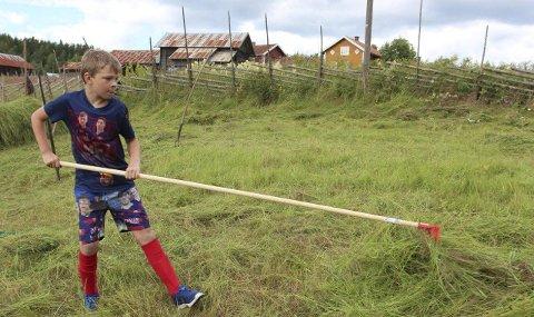 RETT I MUNNEN: Emil Andre Svendsrud på ni år viste seg som en habil slåttekar søndag – med tunga rett i munnen.