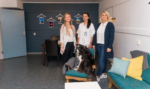 PROSJEKT: Jeanette Heggeseth og Amila Dzemila har hatt rommet spm skoleprosjekt. I midten står Gerd Elin Danielsberg, og i stolen sitter hunden Lasse.