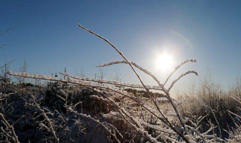 KALDT OG SOL: Meteorologen melder om sol og kalde temperaturer på Haugalandet den kommende uka.