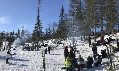 RIKTIG DAG: Mosjøen skole valgte riktig dag å ta med seg elevene på Sjåmoen. Fantastisk vær og god stemning i Pølsedalen. Foto: Per Vikan