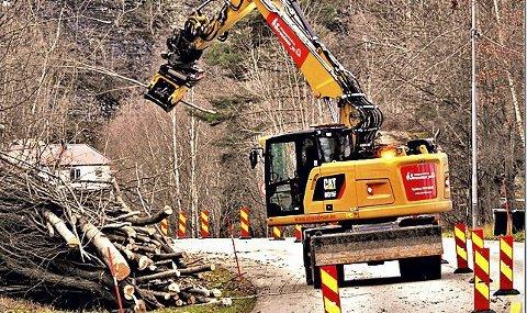 GODT I GANG: I desember gjorde entreprenøren Fanebust og Strandeman seg ferdige med rydding av cirka 40 mål skog nord for Holmestrand. FOTO: TRYGVE ERIKSEN