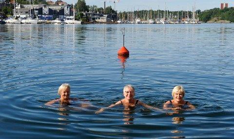 Dagens høydepunkt: Kilenfruene Ellen Ekheim, Evy Bjerke og Anne Berg Gregertsen lever det gode liv på Kilenbrygge og tar seg et morgenbad hver dag.