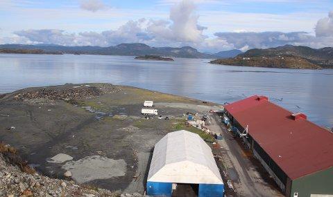 SUKKERPRODUKSJON: På denne utfylte industritomta ved Fiskå Mølle er det konkrete planer for å bygge en fabrikk som produserer sukker fra norsk skog. Sukkeret skal brukes i kraftfôr.