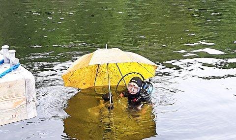 Mistet paraplyen?: En gul paraply hentes opp av dykkere ved ett av skjærgårdens populære badesteder.