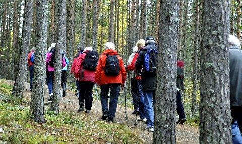 PÅ TUR: Tinnemyra-skogene brukes som turområde av svært mange. Mange er redd for at det skal komme en svær ny E134 her.
