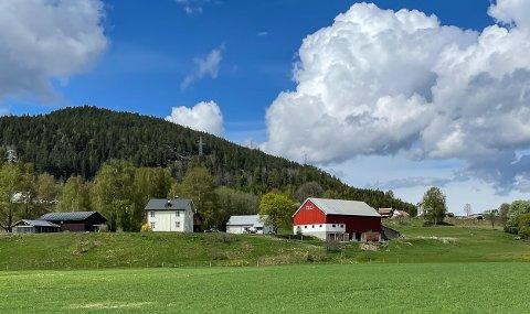 SAULAND: Landbrukseiendommen Fosse Nigard ligger i Fossegrenda i Sauland, og har en prisantydning på 5,5 millioner kroner.