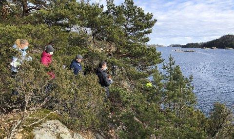 Befaring: Politikerne står her og ser mot området hvor det er planlagt å etablere småbåtanlegg. Foto: Marianne Drivdal