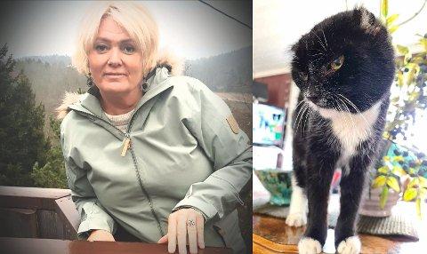 Yvonne Indseth mistet katten Anton som ble 20 år. Den ble påkjørt ved en vei og forlatt.