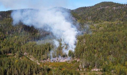 BRANNFARE: Nødetater rykket torsdag forrige uke ut til en skogbrann i området Kjennaveien/Teigtjern ved Eidsfoss. Meteorologen fraråder nå folk å tenne bål i Drammensområdet som følge av tørt underlag.