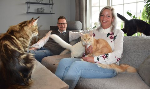 AVSLAPPET: Anders Wenaas (42) og Stine Aasvik (38) kan ikke være hysterik redd for å få hår i sofaen. De firbente går fritt over hele huset.