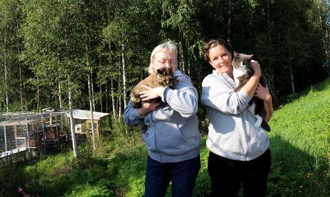 TAR VARE PÅ DE HJEMLØSE: (f.v) Bente Bergstrøm og Hilde Fladeby med Samantha og Lotta i armene. Samantha og hennes familie på tre kattunger var de første Bente hadde som fosterhjem.