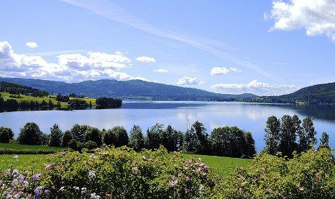 Sommeridyll: Randsfjorden sett mot Nesbakken en vakker junidag. Bildet er tatt fra Roenland ved Sløvika i Jevnaker. Foto: Jørn Haakenstad