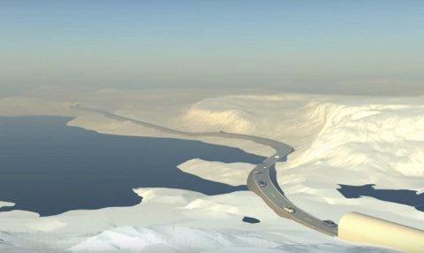 Tunneler på Hardangervidda: En ny rapport som snart skal legges frem foreslår etappevis utbygging av nye tunneler over Hardangervidda. Den første tunnelen ved Dyranut kan bygges for rundt to milliarder kroner. Illustrasjon: Hardangerviddatunnelene AS