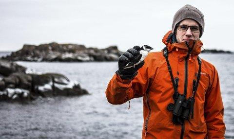 Ornitolog: Førstekonsulent i Norsk Ornitologisk Forening, Oddvar Heggøy, bor på Ballstad. Her er han sammen med en død alkekonge. Foto :Jon Olav Larsen