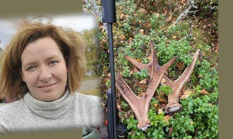 Jaktminne: Veslemøy Drangevåg har tatt vare på geviret fra elgen. Her dandert med jaktrifla hun brukte.