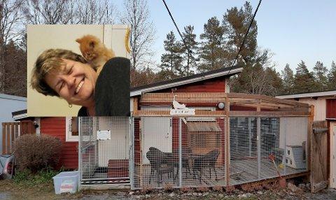 HJELPER MANGE KATTER: Stine Jansen (59) har jobbet 13 år som frivillig på FOD-gården. Hun forteller at de har omplassert rundt 350 katter i år.