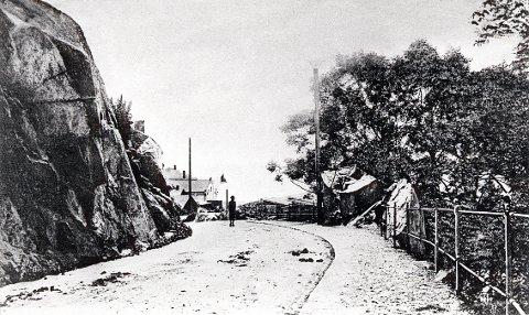 FJELLVEIEN. Fra den nyanlagte Fjellveien omkring 1905.