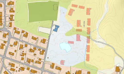 Totalt kom det inn sju forslag på veinavn til et nytt boligområde på Hammern, som anlegges bak ungdomshuset og idrettsbanen. Nå skal politikerne bestemme gatenavnet. Kart: Statens Kartverk