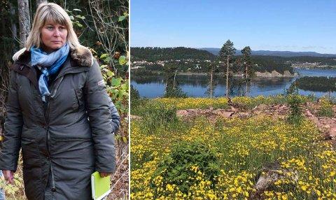 FLERE BOLIGER: I dette området, ved Trøgsle i Hole, ønsker Tronrud Eiendom å bygge inntil 170 bolenheter. – Vi må unngå samme konflikt som med høyhuset i Hønefoss, påpeker Elisabeth Klever.