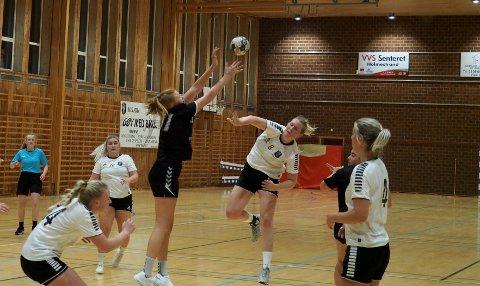 LOKAL HÅNDBALL:  Seriekampene for håndballens aldersbestemte lag utsettes.