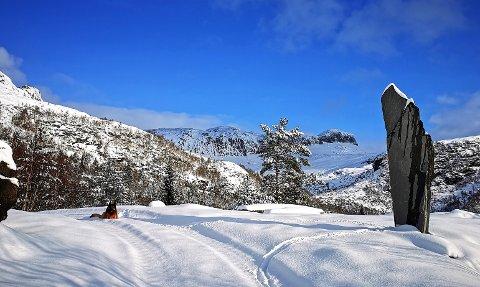 VINTERLEG: Januar har gitt mange fine vinterdagar. Første veka i februar ser ut til å by på fleire slike dagar. Her frå Bygstad, på veg opp mot Storehesten.