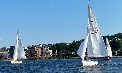 SEILAS: Idylliske forhold for seilerne på Indre havn denne uka.