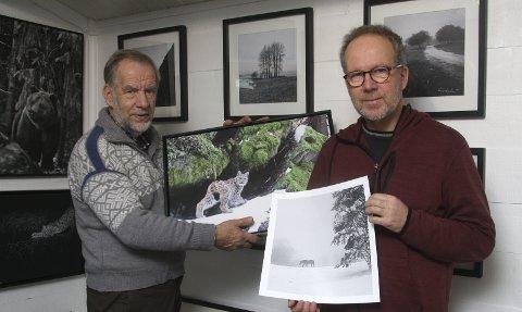 PÅ GALLERI BJØRNEN: Kjell Ivar Wålberg (til venstre) har fått med seg Roy Lønhøiden til fotoutstillingen i villmarksgalleriet Bjørnen hjemme på Lønnhaugen.