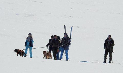 DRØMMESTART: 19 kuldegrader, skareføre og sol fra skyfri himmel for alle som legger ut på skiturer fra Grotli onsdag.