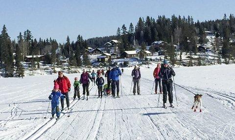 SMÅ OG STORE: Søndag var det en jevn strøm av skiløpere over isen på Mylla. Løypene er populære for både små og store.
