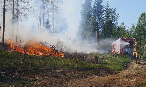 SKOGBRANN: Bildet er fra brann på et hogstfelt i Nordre Oppdalen i mai.
