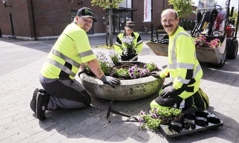 Gjør det pent: Ronny Andersen (t.h.), Arild Soknes og Stian Bengtson fra Jobberiet sørger for flotte blomster i Gågata på Bjørkelangen.Foto: Anita Jacobsen