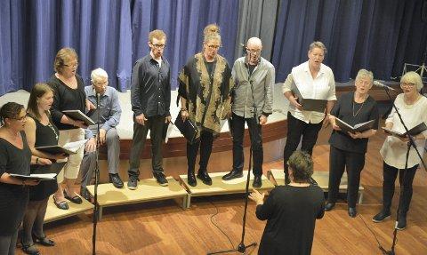 FLY WITH ME: Sylling sangkor flyr fortsatt, men, som det fremgår av bildet fra søndagens konsert i Sylling aula, de trenger noen flere sangere.