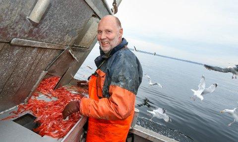 Rekefiske i Oslofjorden. Reketråler. Thor-Inge Svennes på tråleren Samson fisker reker utenfor Jeløya. HAVBLIKK: Rekefisker Thor-Inge Svennes sjekker dagens fangst i rekebingen. En fiskeren er alltid måkenes beste venn.