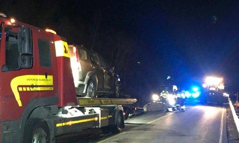 DYRETRAGEDIE: Tre hester måtte bøte med livet etter at de ble påkjørt på E6 i Kåfjord tirsdag kveld.