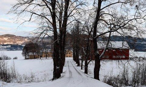 VIKER: Viker den største og høyest prisede landbrukseiendommen som noen gang er omsatt i det åpne marked i Søndre Land.