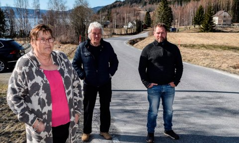 SKUMMELT: – Det oppleves skummelt hver gang vi skal kjøre ut på fylkesveien, sier beboerne f.v. Lillian Furulund, Hans Johan Trøsviken og Roger Trøsviken.