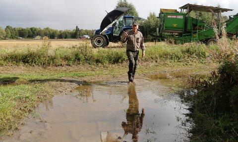 VELDIG BLØTT: – Det er problematisk med bløte jorder nå. Potetene risikerer å drukne, sier Trongaard.