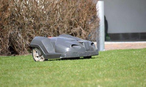 Flere og flere opplever å få robotgressklipperen sin stjålet.