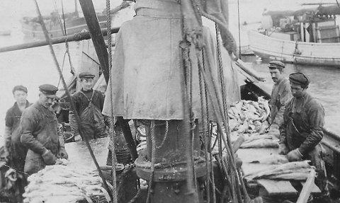 Sløying og flekkjing av skrei ombord i ei slofartskute.