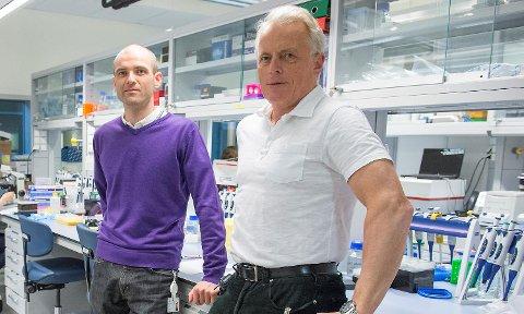 Stian Knappskog og Per Eystein Lønning ved Haukeland universitetssykehus. (Arkiv)