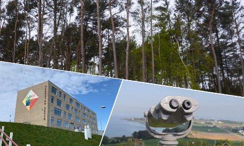 Frisbeegolfbane: Randabergfjellet, nye Harestad skole og Giljaskogen er noen av lokasjonene som vurderes.