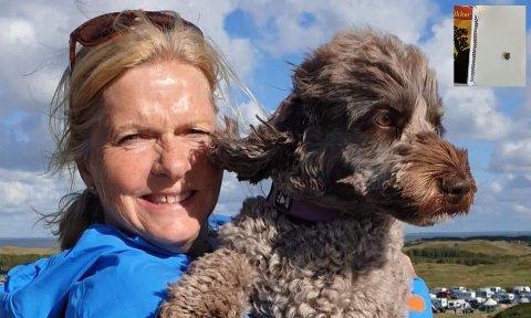 TIDLIG UTE: Heidi Tønnesen oppdaget flått midt i skallen til hunden Tinka.