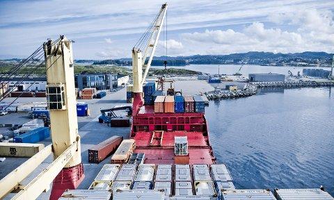 «RUMBA»: Skipet Rumba losser på Husøy. Det må det gjøre hurtig, for å holde tritt med etterspørselen som nå er i markedet. Bildet er hentet fra en tidligere sak.