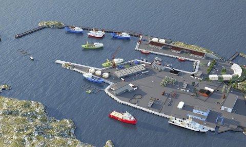 BØMLOS FRAMTID: Slik kan den ytterste delen av nye Bømlo Fiskerihavn i Hovlandshagen på Langevåg bli seende ut når havnen står ferdig om noen år. I første omgang skal en 480 meter lang molo bygges.